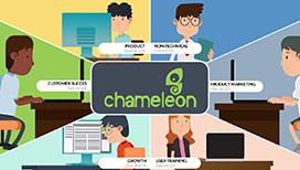chameleon snippet
